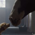 Budweiser_Super_Bowl_Ad_Labrador_Clydesdale_2014_Adoption_Rescue_Labs